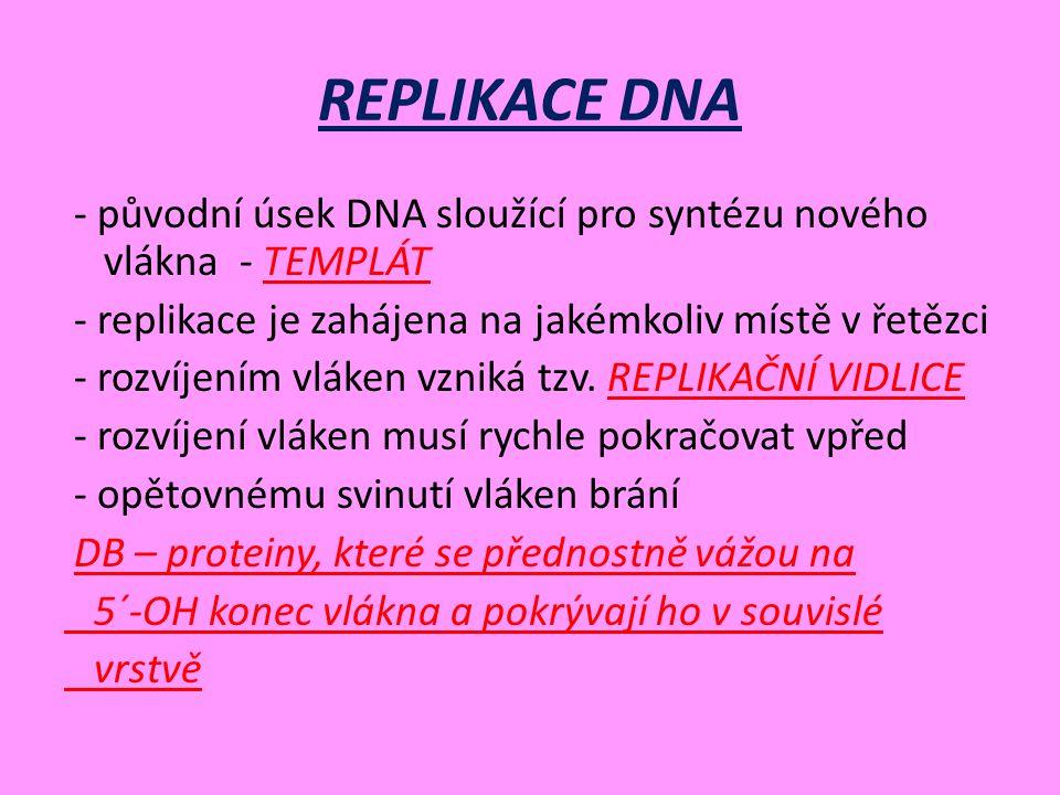 REPLIKACE DNA - původní úsek DNA sloužící pro syntézu nového vlákna - TEMPLÁT - replikace je zahájena na jakémkoliv místě v řetězci - rozvíjením vláken vzniká tzv.