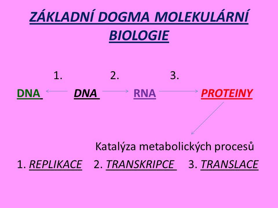 ZÁKLADNÍ DOGMA MOLEKULÁRNÍ BIOLOGIE 1.2. 3. DNA DNA RNA PROTEINY Katalýza metabolických procesů 1.