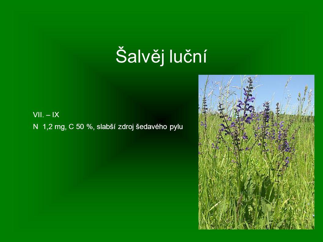 Šalvěj luční VII. – IX N 1,2 mg, C 50 %, slabší zdroj šedavého pylu