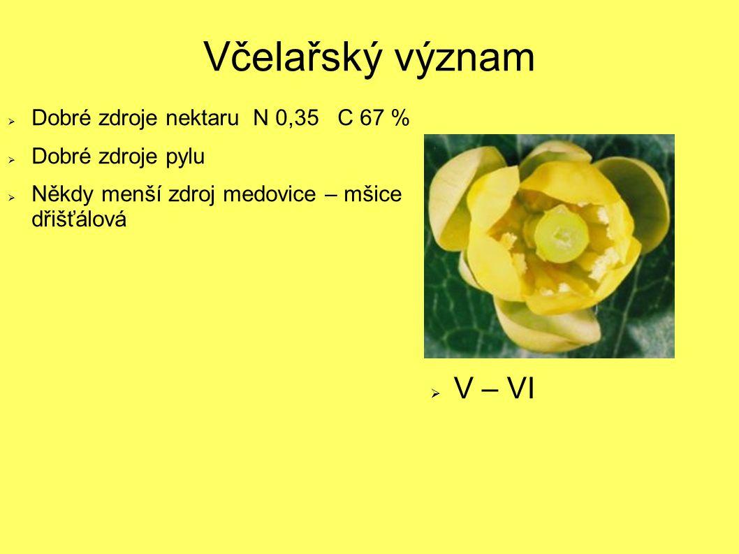 Včelařský význam  Dobré zdroje nektaru N 0,35 C 67 %  Dobré zdroje pylu  Někdy menší zdroj medovice – mšice dřišťálová  V – VI