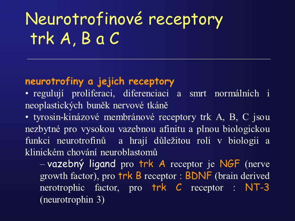 Neurotrofinové receptory trk A, B a C neurotrofiny a jejich receptory regulují proliferaci, diferenciaci a smrt normálních i neoplastických buněk nerv