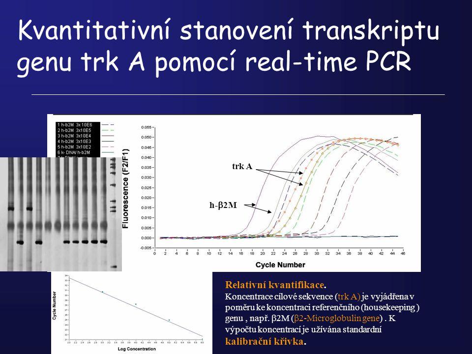 Kvantitativní stanovení transkriptu genu trk A pomocí real-time PCR trk A h-  2M Relativní kvantifikace. Koncentrace cílové sekvence (trk A) je vyjád