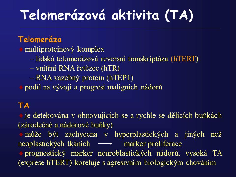 Telomerázová aktivita (TA) Telomeráza  multiproteinový komplex – lidská telomerázová reversní transkriptáza (hTERT) – vnitřní RNA řetězec (hTR) – RNA
