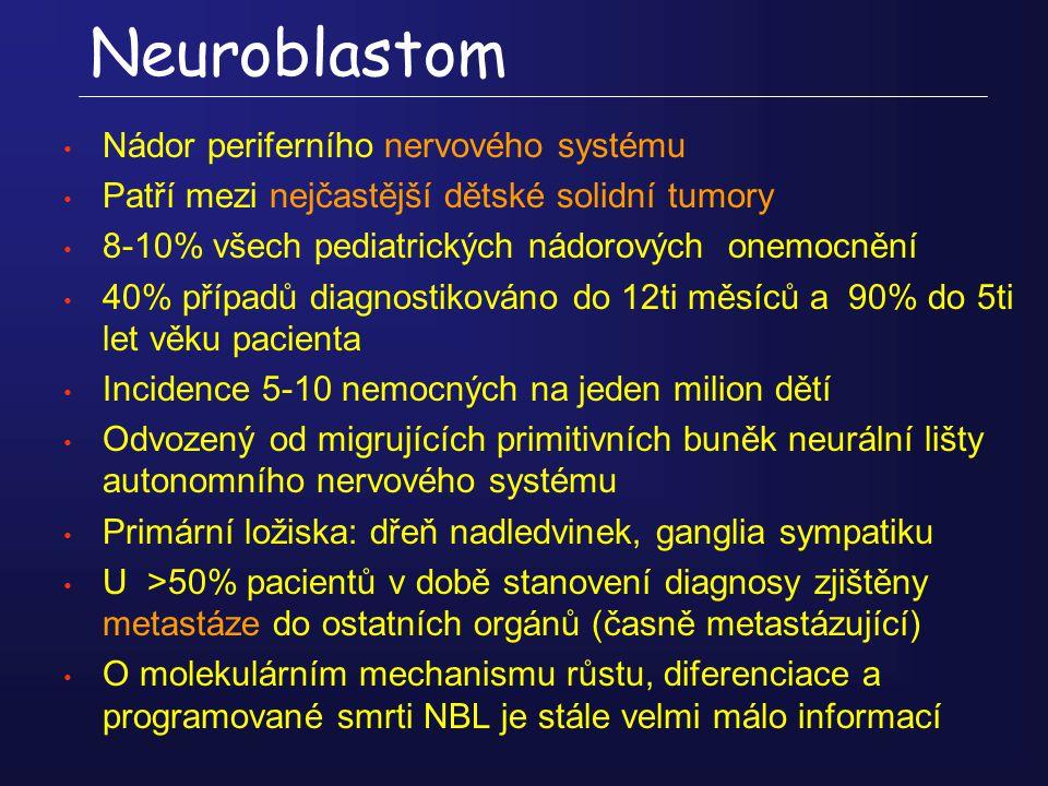 Neuroblastom Nádor periferního nervového systému Patří mezi nejčastější dětské solidní tumory 8-10% všech pediatrických nádorových onemocnění 40% příp