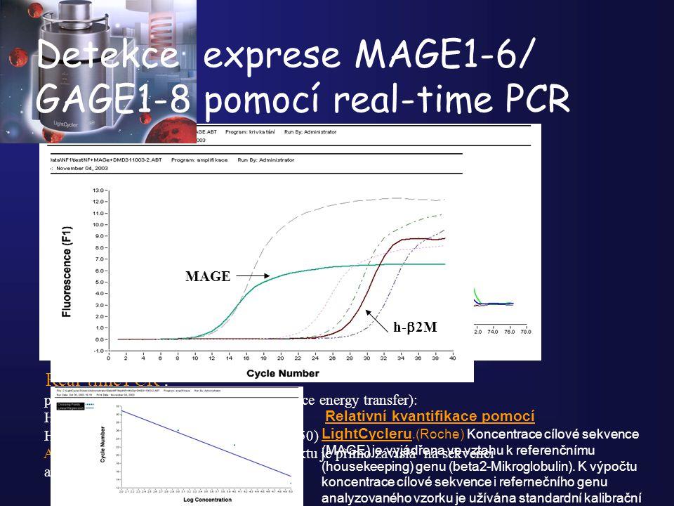 GAGE 1-8 K-/genomDNA Real-time PCR : pomocí FRED sond ( fluorescence resonance energy transfer): Hybrid. proba 1: donor (fluorescein) Hybrid proba 2: