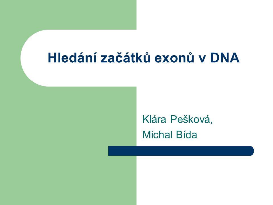 Hledání začátků exonů v DNA Klára Pešková, Michal Bída