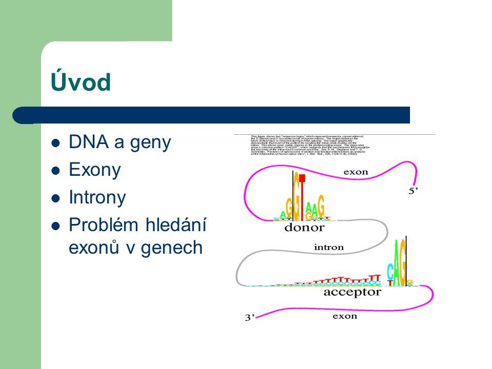 Úvod DNA a geny Exony Introny Problém hledání exonů v genech