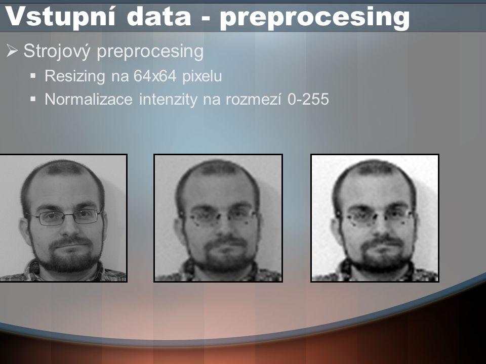 Vstupní data - preprocesing  Strojový preprocesing  Resizing na 64x64 pixelu  Normalizace intenzity na rozmezí 0-255