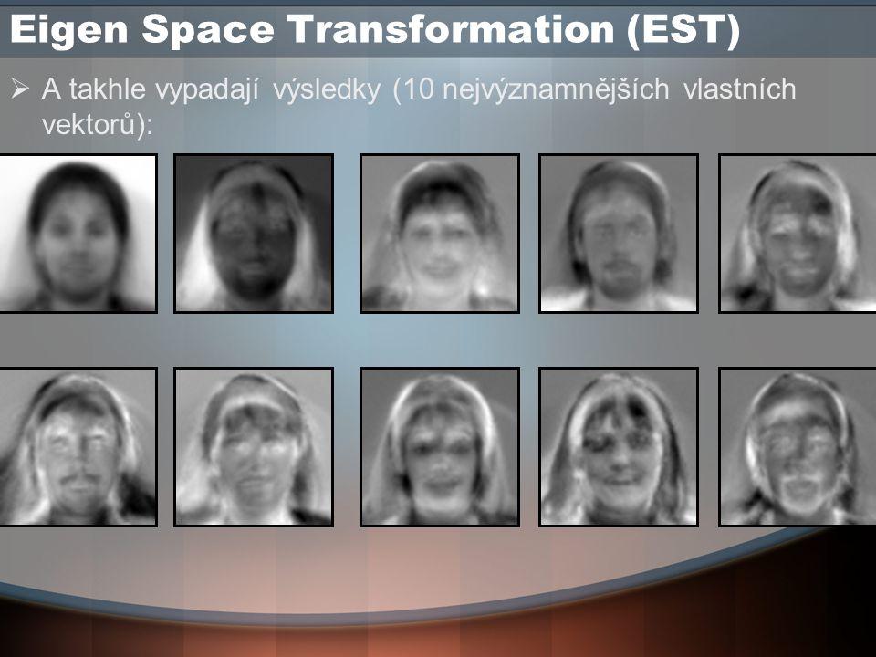 Eigen Space Transformation (EST)  A takhle vypadají výsledky (10 nejvýznamnějších vlastních vektorů):