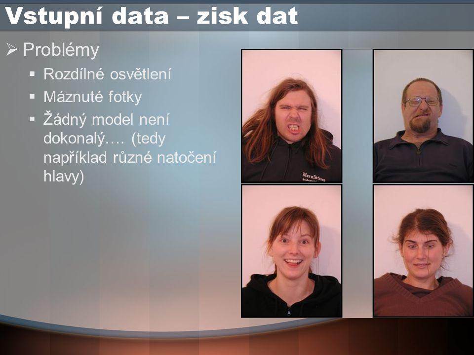 Vstupní data - preprocesing  Ruční preprocesing  Nalezení obličeje a zisk čtvercové fotky se středem v obličeji  Převedení z barevných fotografií na černobílé