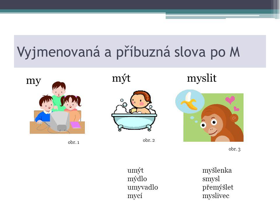 Vyjmenovaná a příbuzná slova po M mýt umýt mýdlo umyvadlo mycí my myslit myšlenka smysl přemýšlet myslivec obr.
