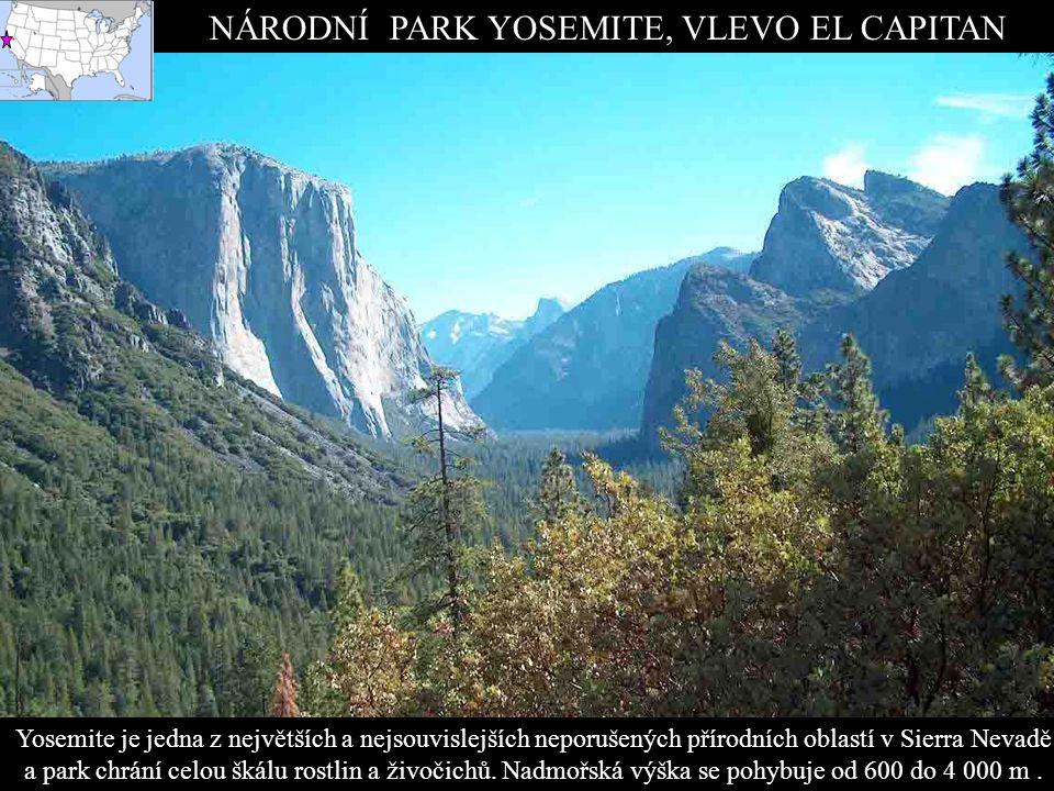 NÁRODNÍ PARK YOSEMITE, VLEVO EL CAPITAN Yosemite je jedna z největších a nejsouvislejších neporušených přírodních oblastí v Sierra Nevadě a park chrání celou škálu rostlin a živočichů.