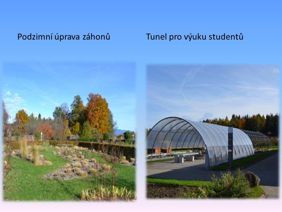 Podzimní úprava záhonůTunel pro výuku studentů