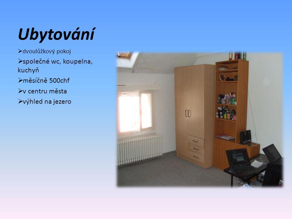 Ubytování  dvoulůžkový pokoj  společné wc, koupelna, kuchyň  měsíčně 500chf  v centru města  výhled na jezero