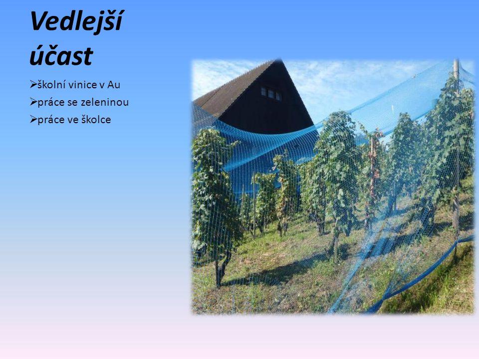 Vedlejší účast  školní vinice v Au  práce se zeleninou  práce ve školce