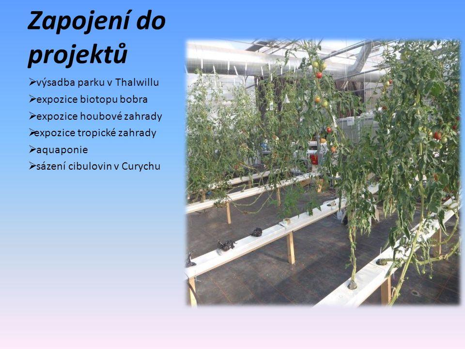 Zapojení do projektů  výsadba parku v Thalwillu  expozice biotopu bobra  expozice houbové zahrady  expozice tropické zahrady  aquaponie  sázení cibulovin v Curychu