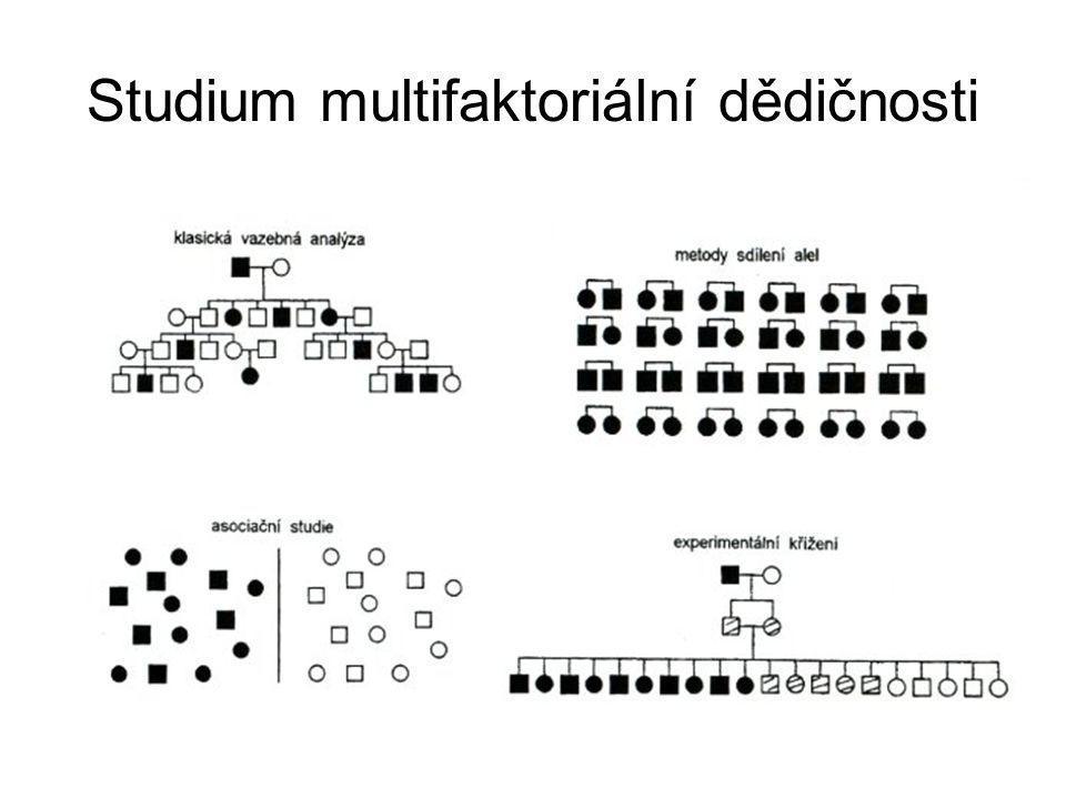 Studium multifaktoriální dědičnosti