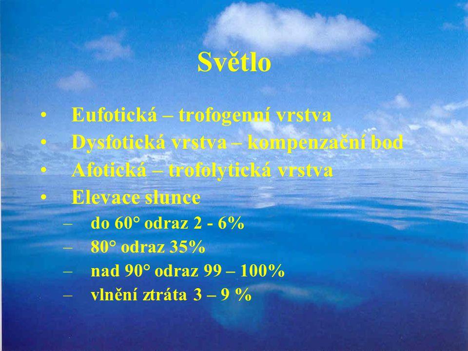 Eufotická – trofogenní vrstva Dysfotická vrstva – kompenzační bod Afotická – trofolytická vrstva Elevace slunce –do 60° odraz 2 - 6% –80° odraz 35% –n