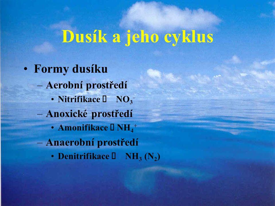 Dusík a jeho cyklus Formy dusíku –Aerobní prostředí Nitrifikace  NO 3 - –Anoxické prostředí Amonifikace  NH 4 + –Anaerobní prostředí Denitrifikace