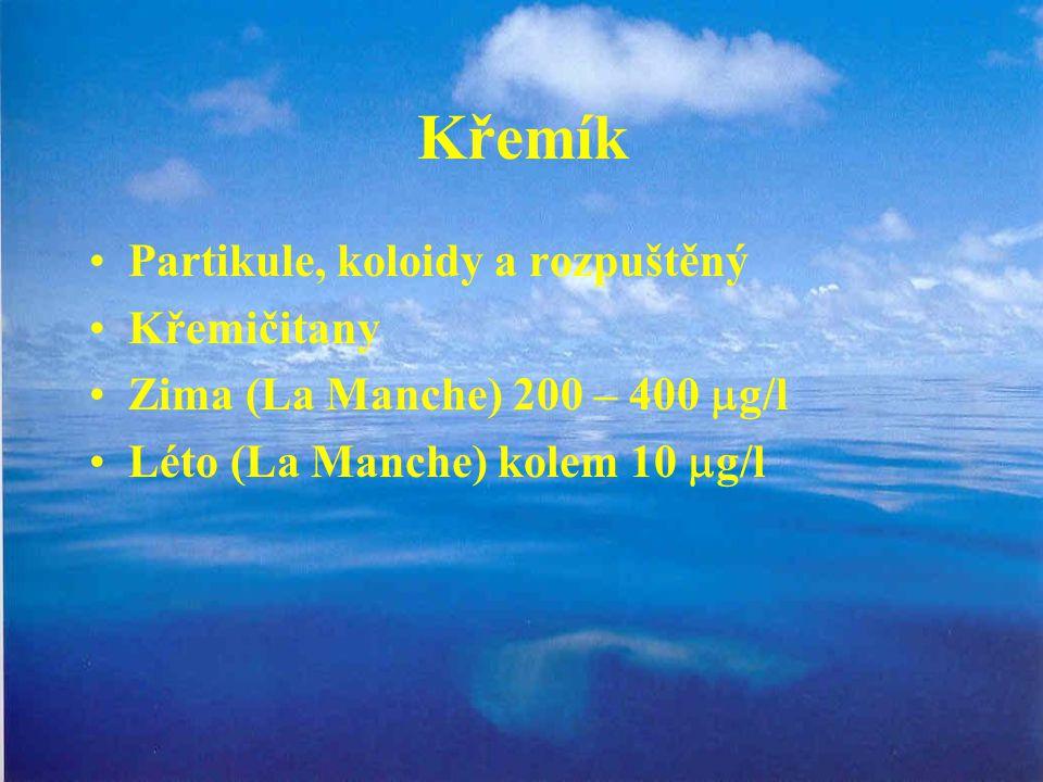 Křemík Partikule, koloidy a rozpuštěný Křemičitany Zima (La Manche) 200 – 400  g/l Léto (La Manche) kolem 10  g/l