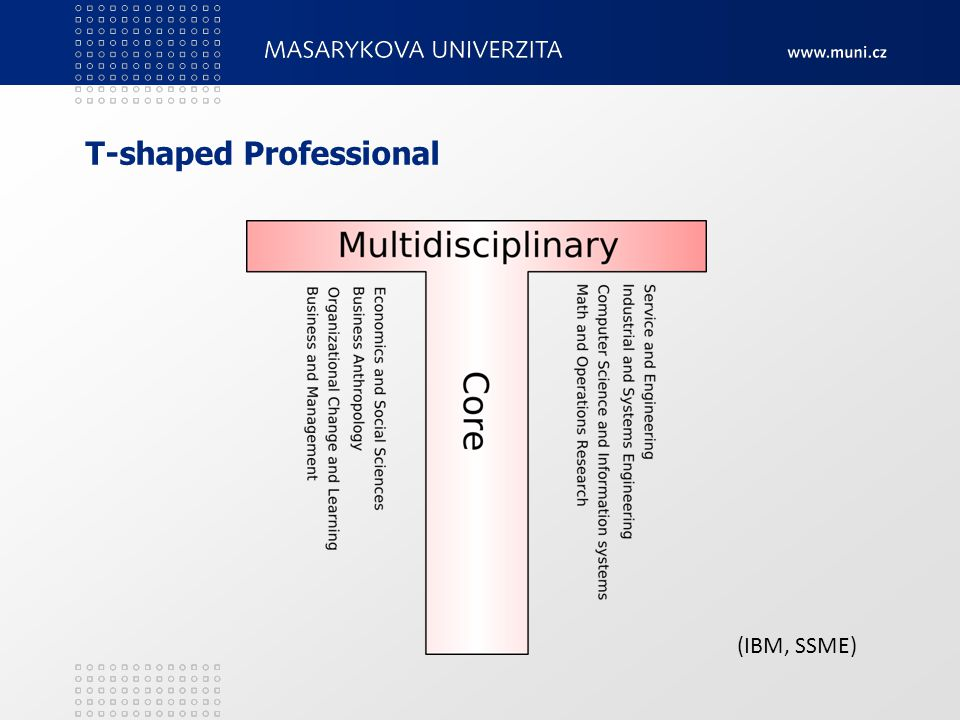 T-shaped Professional (IBM, SSME)