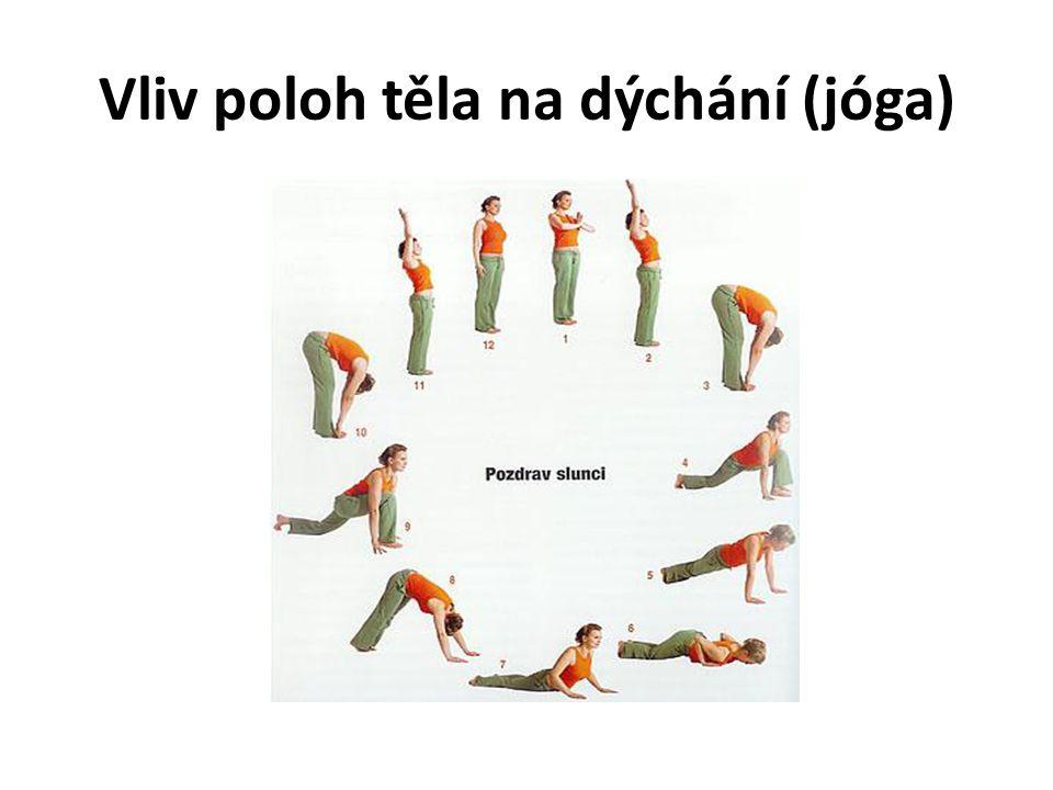 Vliv poloh těla na dýchání (jóga)