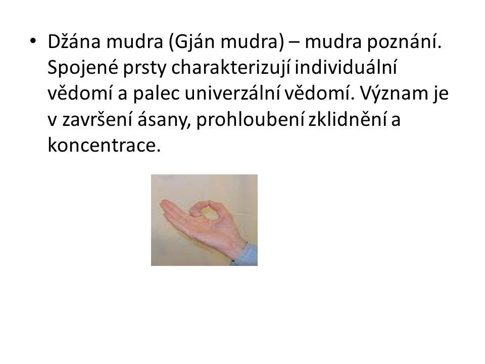 Džána mudra (Gján mudra) – mudra poznání. Spojené prsty charakterizují individuální vědomí a palec univerzální vědomí. Význam je v završení ásany, pro