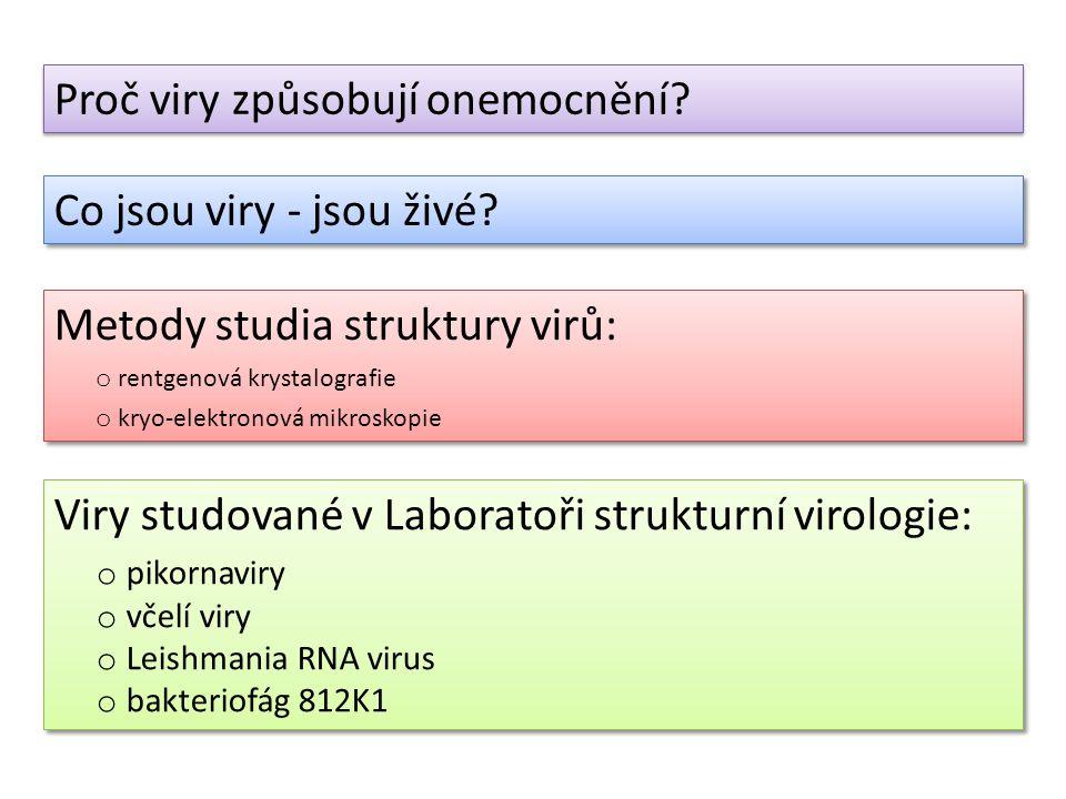 Viry studované v Laboratoři strukturní virologie: o pikornaviry o včelí viry o Leishmania RNA virus o bakteriofág 812K1 Viry studované v Laboratoři st