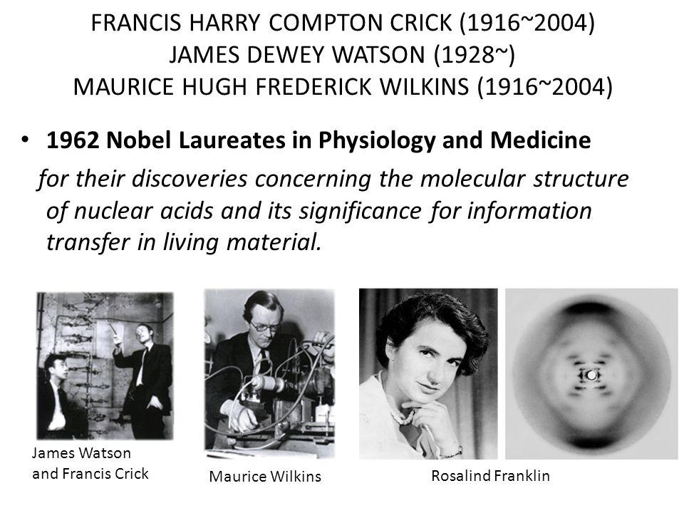 FRANCIS HARRY COMPTON CRICK (1916~2004) JAMES DEWEY WATSON (1928~) MAURICE HUGH FREDERICK WILKINS (1916~2004) 1962 Nobel Laureates in Physiology and M