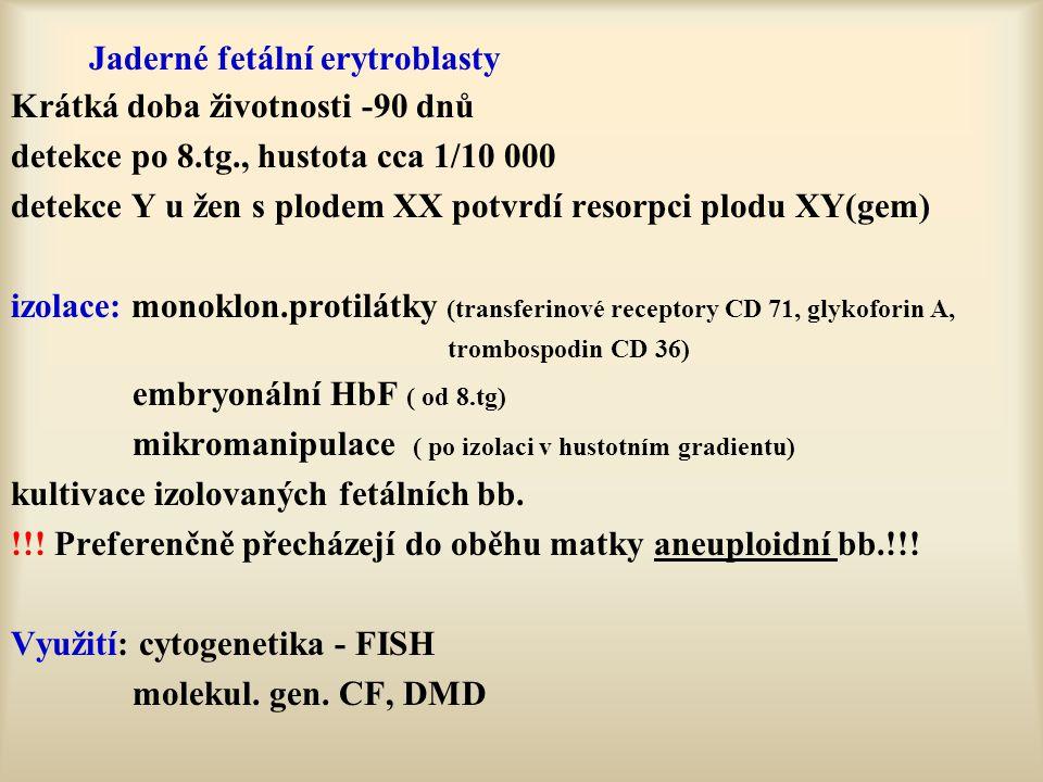 Jaderné fetální erytroblasty Krátká doba životnosti -90 dnů detekce po 8.tg., hustota cca 1/10 000 detekce Y u žen s plodem XX potvrdí resorpci plodu