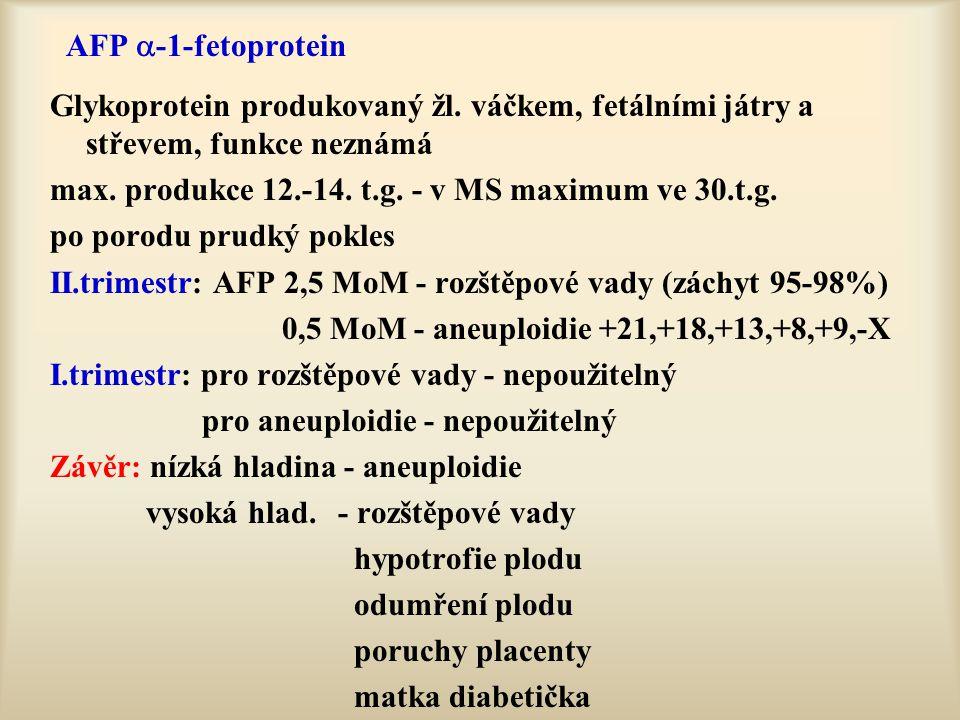 AFP  -1-fetoprotein Glykoprotein produkovaný žl. váčkem, fetálními játry a střevem, funkce neznámá max. produkce 12.-14. t.g. - v MS maximum ve 30.t.