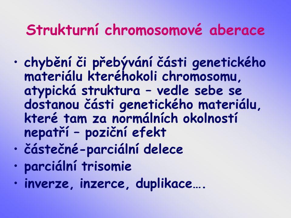 Strukturní chromosomové aberace chybění či přebývání části genetického materiálu kteréhokoli chromosomu, atypická struktura – vedle sebe se dostanou části genetického materiálu, které tam za normálních okolností nepatří – poziční efekt částečné-parciální delece parciální trisomie inverze, inzerce, duplikace….