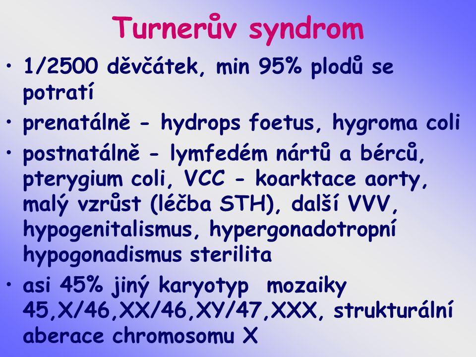 Turnerův syndrom 1/2500 děvčátek, min 95% plodů se potratí prenatálně - hydrops foetus, hygroma coli postnatálně - lymfedém nártů a bérců, pterygium coli, VCC - koarktace aorty, malý vzrůst (léčba STH), další VVV, hypogenitalismus, hypergonadotropní hypogonadismus sterilita asi 45% jiný karyotyp mozaiky 45,X/46,XX/46,XY/47,XXX, strukturální aberace chromosomu X