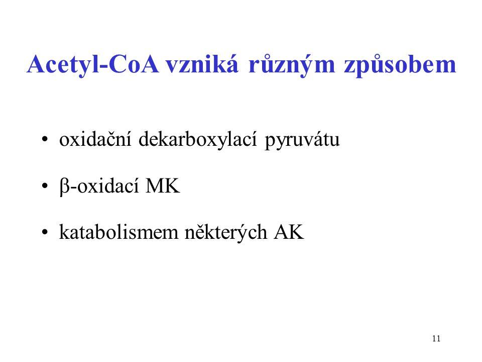 11 Acetyl-CoA vzniká různým způsobem oxidační dekarboxylací pyruvátu β-oxidací MK katabolismem některých AK