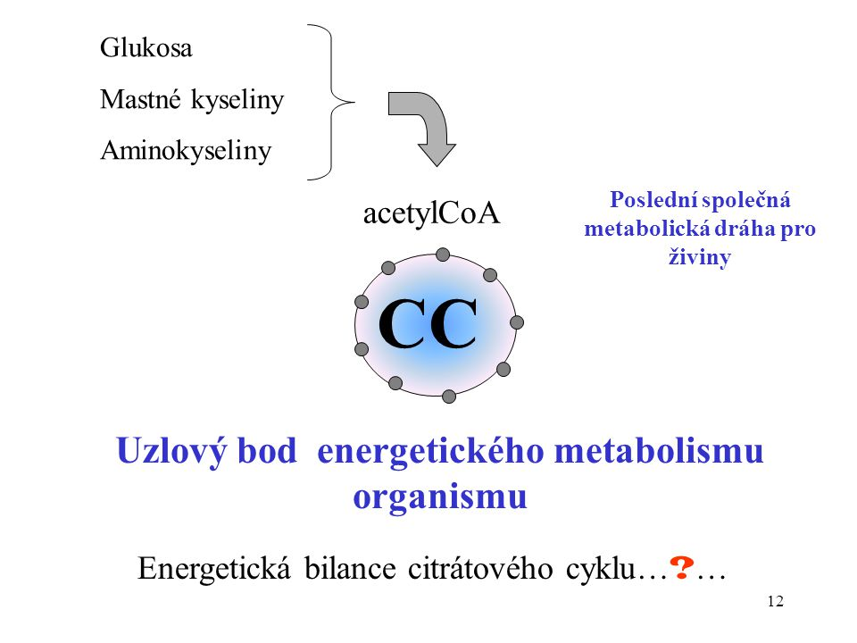 12 CC acetylCoA Glukosa Mastné kyseliny Aminokyseliny Uzlový bod energetického metabolismu organismu Poslední společná metabolická dráha pro živiny En