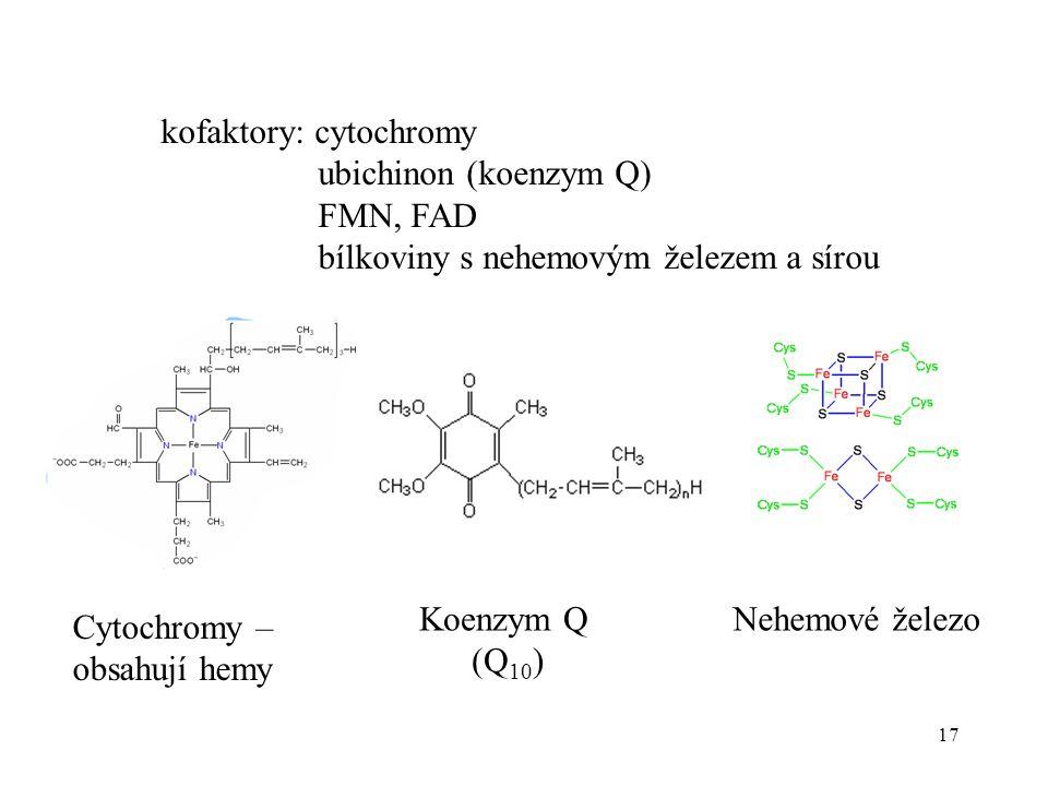 17 kofaktory: cytochromy ubichinon (koenzym Q) FMN, FAD bílkoviny s nehemovým železem a sírou Cytochromy – obsahují hemy Koenzym Q (Q 10 ) Nehemové že