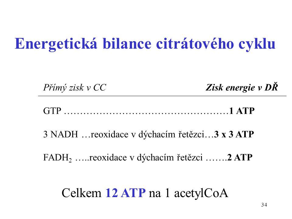 34 Energetická bilance citrátového cyklu Přímý zisk v CC Zisk energie v DŘ GTP ……………………………………………1 ATP 3 NADH …reoxidace v dýchacím řetězci…3 x 3 ATP F