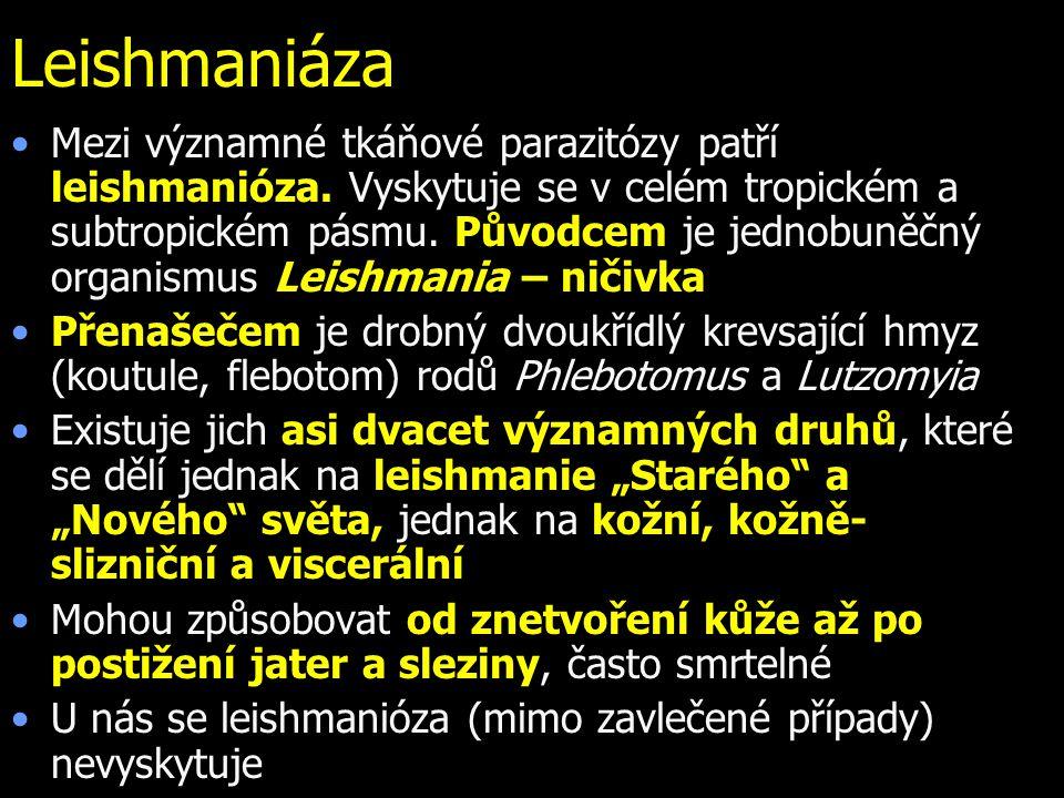 Leishmaniáza Mezi významné tkáňové parazitózy patří leishmanióza. Vyskytuje se v celém tropickém a subtropickém pásmu. Původcem je jednobuněčný organi