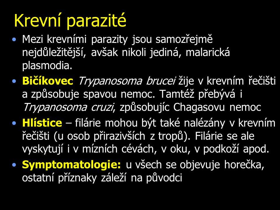 Krevní parazité Mezi krevními parazity jsou samozřejmě nejdůležitější, avšak nikoli jediná, malarická plasmodia. Bičíkovec Trypanosoma brucei žije v k