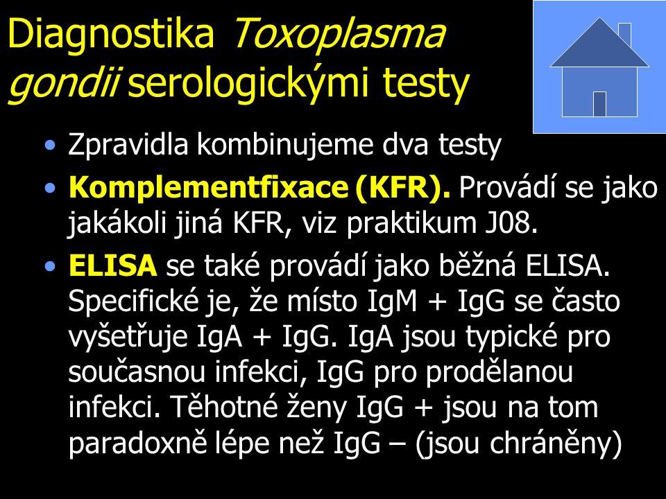 Diagnostika Toxoplasma gondii serologickými testy Zpravidla kombinujeme dva testy Komplementfixace (KFR). Provádí se jako jakákoli jiná KFR, viz prakt
