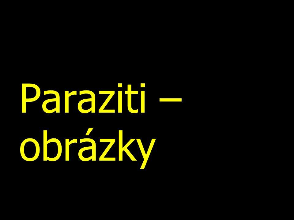 Paraziti – obrázky
