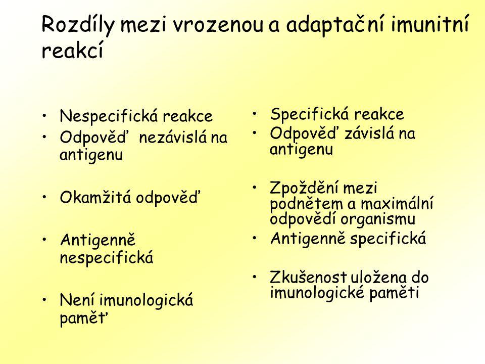 Rozdíly mezi vrozenou a adaptační imunitní reakcí Nespecifická reakce Odpověď nezávislá na antigenu Okamžitá odpověď Antigenně nespecifická Není imunologická paměť Specifická reakce Odpověď závislá na antigenu Zpoždění mezi podnětem a maximální odpovědí organismu Antigenně specifická Zkušenost uložena do imunologické paměti