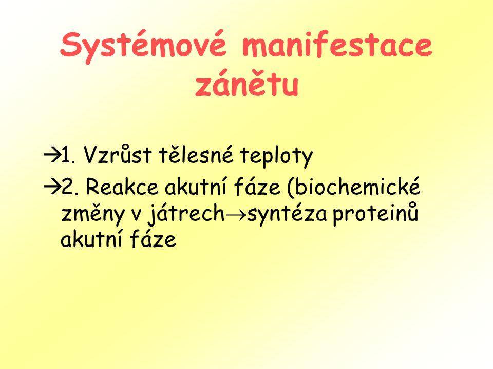 Systémové manifestace zánětu  1. Vzrůst tělesné teploty  2. Reakce akutní fáze (biochemické změny v játrech  syntéza proteinů akutní fáze