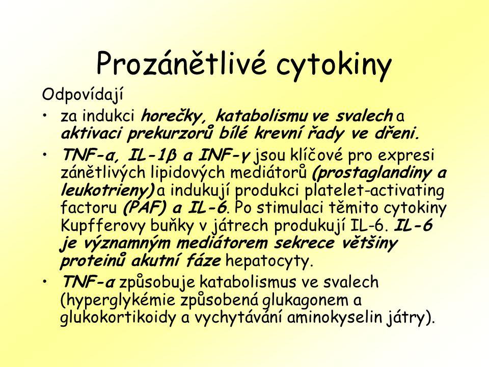 Prozánětlivé cytokiny Odpovídají za indukci horečky, katabolismu ve svalech a aktivaci prekurzorů bílé krevní řady ve dřeni. TNF-α, IL-1β a INF-γ jsou