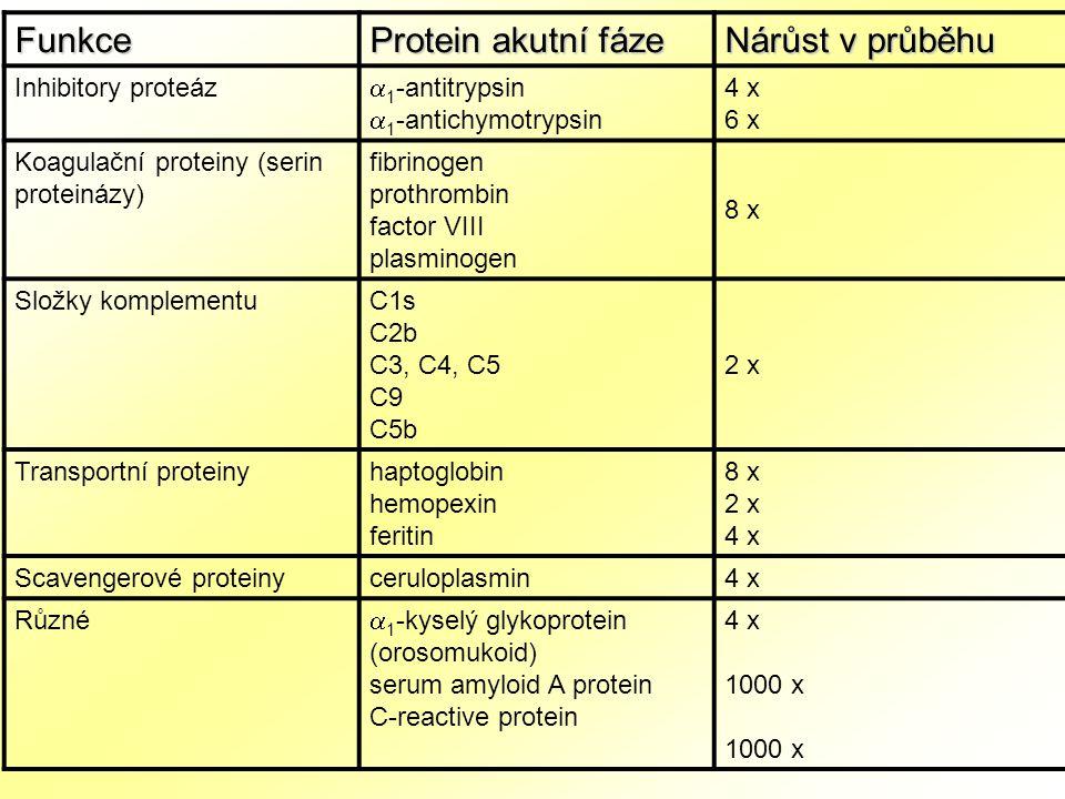 Funkce Protein akutní fáze Nárůst v průběhu Inhibitory proteáz  1 -antitrypsin  1 -antichymotrypsin 4 x 6 x Koagulační proteiny (serin proteinázy) fibrinogen prothrombin factor VIII plasminogen 8 x Složky komplementuC1s C2b C3, C4, C5 C9 C5b 2 x Transportní proteinyhaptoglobin hemopexin feritin 8 x 2 x 4 x Scavengerové proteinyceruloplasmin 4 x Různé  1 -kyselý glykoprotein (orosomukoid) serum amyloid A protein C-reactive protein 4 x 1000 x