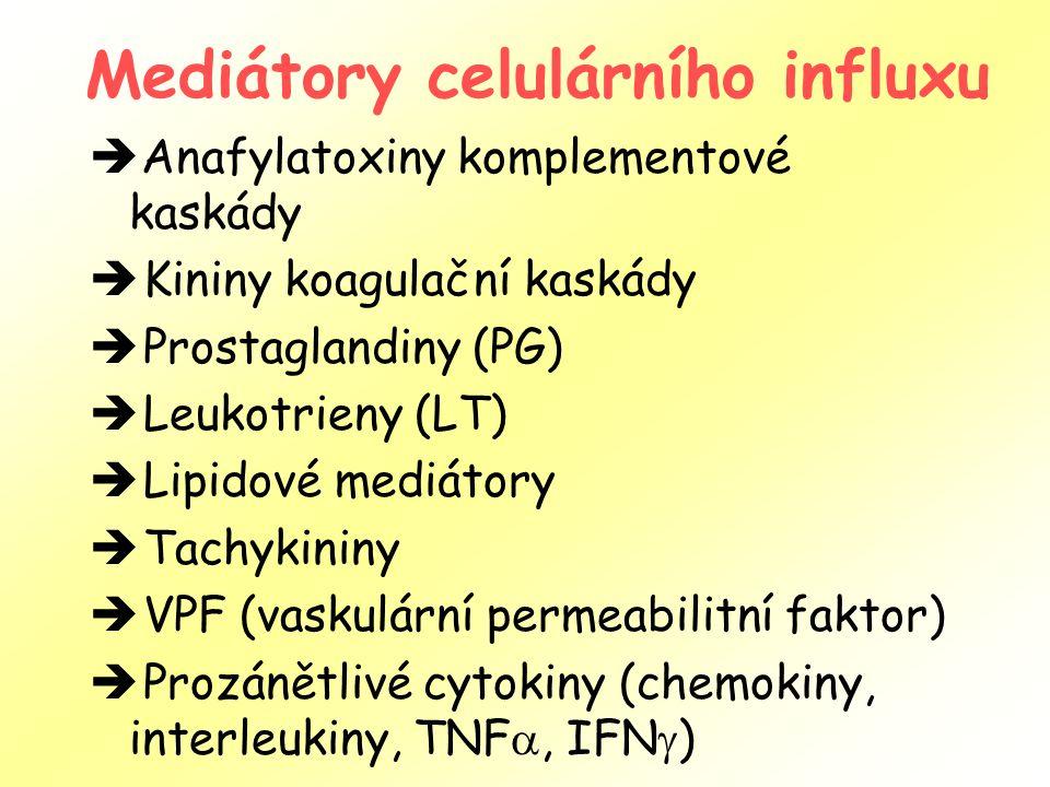 Mediátory celulárního influxu  Anafylatoxiny komplementové kaskády  Kininy koagulační kaskády  Prostaglandiny (PG)  Leukotrieny (LT)  Lipidové mediátory  Tachykininy  VPF (vaskulární permeabilitní faktor)  Prozánětlivé cytokiny (chemokiny, interleukiny, TNF , IFN  )