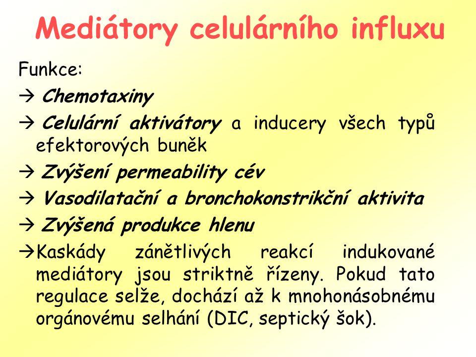 Mediátory celulárního influxu Funkce:  Chemotaxiny  Celulární aktivátory a inducery všech typů efektorových buněk  Zvýšení permeability cév  Vasodilatační a bronchokonstrikční aktivita  Zvýšená produkce hlenu  Kaskády zánětlivých reakcí indukované mediátory jsou striktně řízeny.