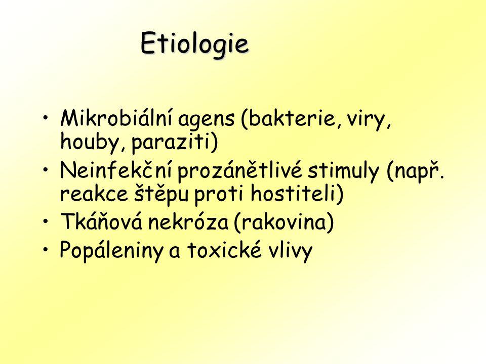 Mikrobiální agens (bakterie, viry, houby, paraziti) Neinfekční prozánětlivé stimuly (např.