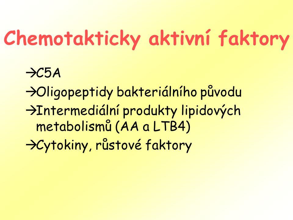 Chemotakticky aktivní faktory  C5A  Oligopeptidy bakteriálního původu  Intermediální produkty lipidových metabolismů (AA a LTB4)  Cytokiny, růstov