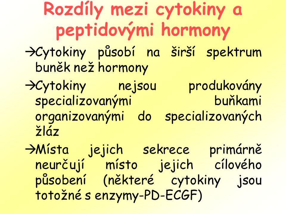 Rozdíly mezi cytokiny a peptidovými hormony  Cytokiny působí na širší spektrum buněk než hormony  Cytokiny nejsou produkovány specializovanými buňkami organizovanými do specializovaných žláz  Místa jejich sekrece primárně neurčují místo jejich cílového působení (některé cytokiny jsou totožné s enzymy-PD-ECGF)